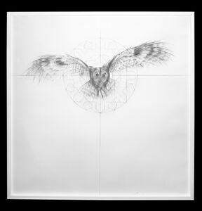 Owl Fractal Star