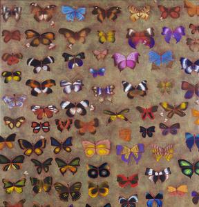 Guepes Papillons