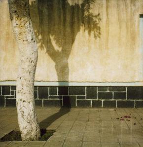 Maryam Street