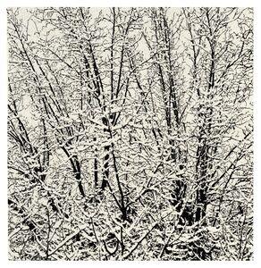 First Snow 011C