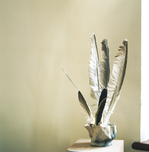 Feather Sculpture, Seaford