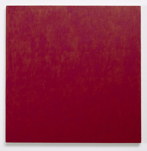 Red Painting: Irgazine Ruby, February 6