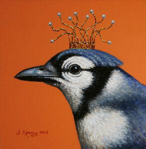 Royal Blue Jay
