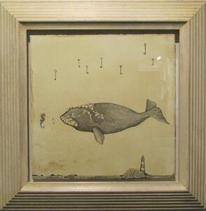 Balena cavalluccio del mare
