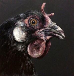Devil hen