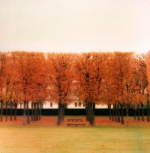 Parc de Sceaux, France (10-08-39c-3)