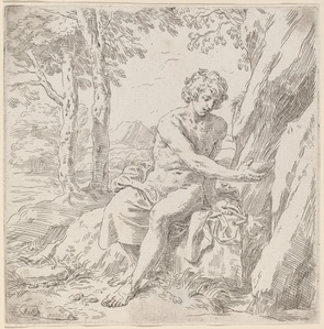 Saint John the Baptist in the Desert