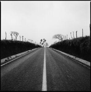 A Road Leads from Tropical Region of Montepio, Veracruz, Mexico