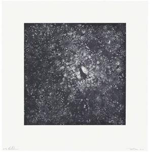 Cauli-Cosmos