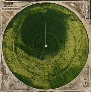 Pivot Irrigation #39  High Plains, Texas Panhandle