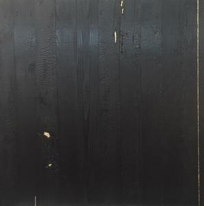 Kintsugi (Repaired with Gold) Shou Sugi Ban (Charred Cedar Wood) 4.4.1