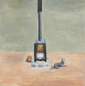 Grey Cat beside Stove