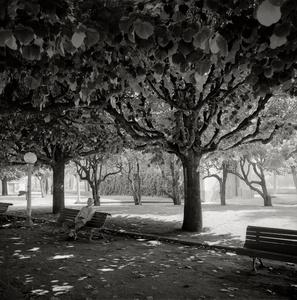 Park Coimbra