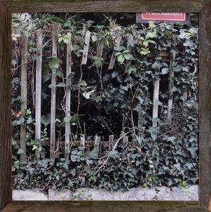 Fence#2
