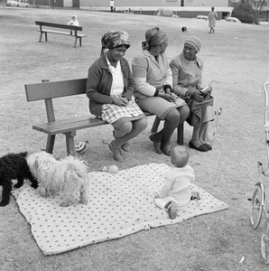 Baby with child-minders and dogs in the Alexandra Street Park, Hillbrow