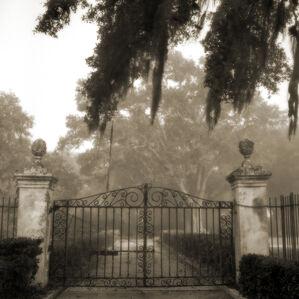 Brignac Estate Gate