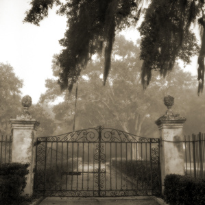 Brignac Estate Gate