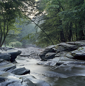 Shinn creek-