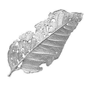 John Iversen One of a Kind Rhodium Sterling Silver Leaf Pin