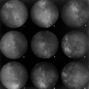 PLATE 51 NINE SELECTED AREAS OF THE MILKY WAY PHOTOGRAPHED ON A SMALL SCALE