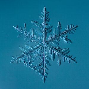 Snowflake2015.02.22.002.1