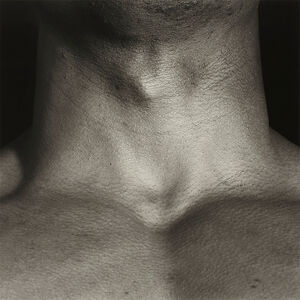 Neck/Livingston
