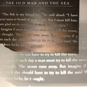 """""""The Old Man and the Sea"""""""
