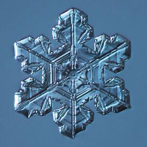 Snowflake 2014.03.23.005
