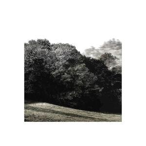 Trees & Keys - Mix 1.4, Recording 37, 4442 : Print