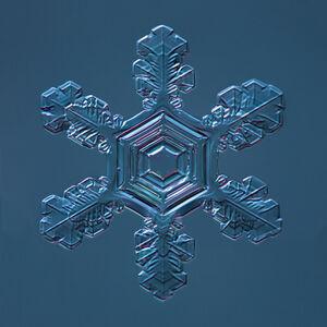 Snowflake 2015.02.04.001