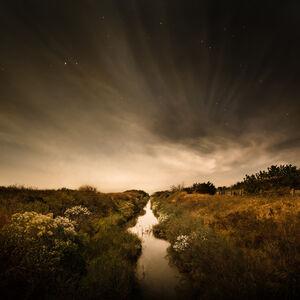 The Creek (Martha's Vineyard, Massachusetts)