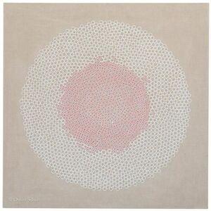 Diatom (circle packing)