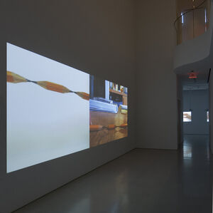 "Bruce Nauman ""Some Illusions: Drawings and Videos"""