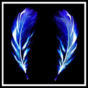 Flight of Fancy - Electric Blue