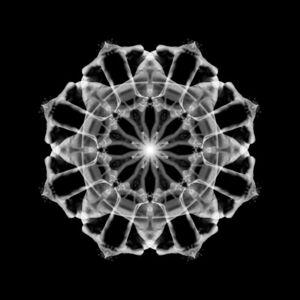 Body Mandala #BT8M