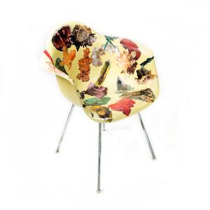 Genus Chairs (Mineral Chair)