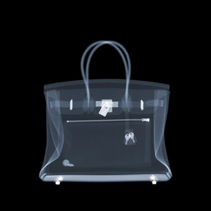 Hermes Birkin Bag Two Cents