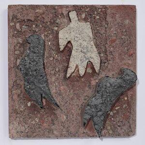 Fåglar och människa
