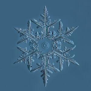 Snowflake 2015.02.02.001