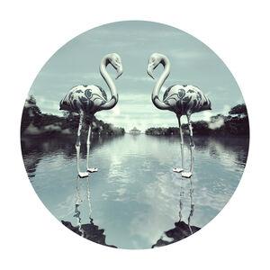 US-Lovebirds