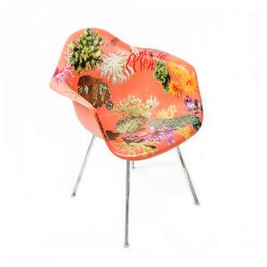Genus Chairs (Coral Chair)