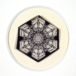 Untitled (Snowflake #15)