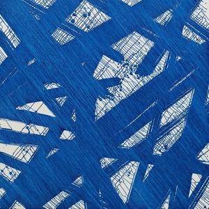 Histoire de bleu