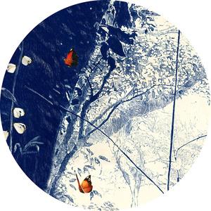 Macrocosmology III