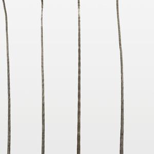 Palm Line 2, 1, 5, 3