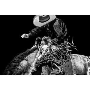 Rodeo no. 10