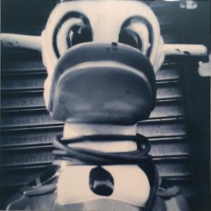 Kiddie Ride/Scary Duck