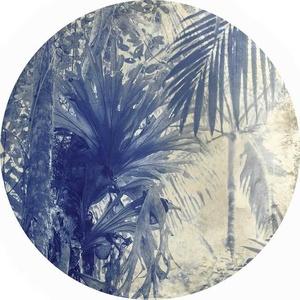 Natura Pacifica VI