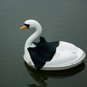 Swanrider II