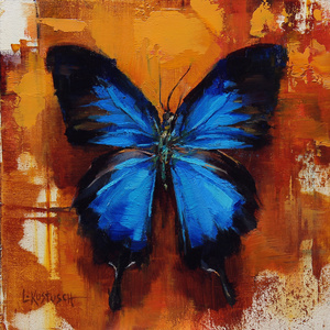 The Ulysses Butterflu